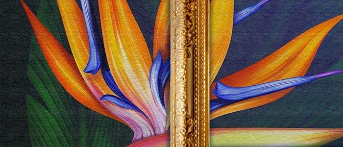 Décoration digital mactac indoor